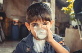 Hoe gezond is onze melk eigenlijk?