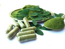 Start je ochtend met moringa voor een boost van je weerstand