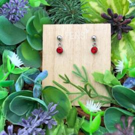 Kinderoorbellen - oorstekers met crystal hanger - rood