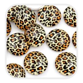 Cabochons 12 mm - leopard gold - per stuk