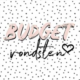 Budgetvondsten pakket