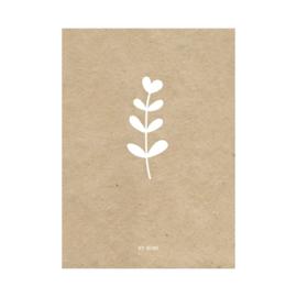 Kaart / bloem / kraft