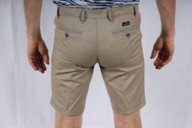 Fellows short