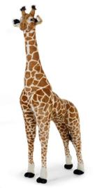 Giraf extra groot 180 cm