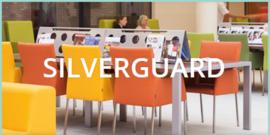 Kleurenkaart Silverguard