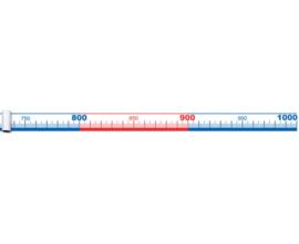 Getallenlijn tot 1000