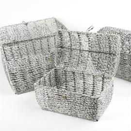 Set van 3 zilveren metallic opbergmanden