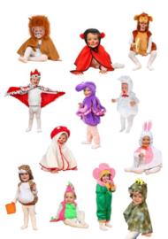 Verkleedkleding Baby-dreumes 12-delig