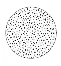 Onderzetter gespikkeld, Label-R