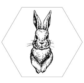 Muurhexagon konijn wit, Label-R