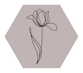Muurhexagon tulp zand, Label-R