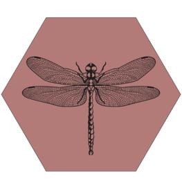 Muurhexagon libelle roze, Label-R