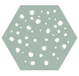 Muurhexagon dots mint, Label-R