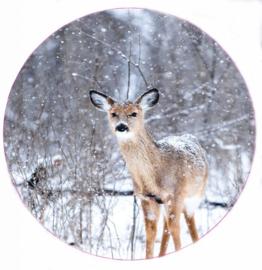 Muurcirkel bambi 28 cm, Label-R
