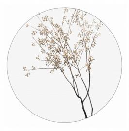 Muurcirkel Dry plants bruin 58 cm, Label-R