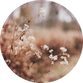 Muurcirkel dry flowers 28 cm, Label-R