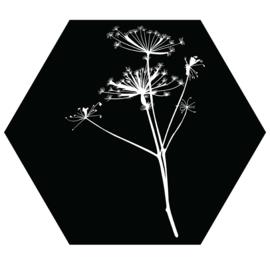 Muurhexagon zwart met witte berenklauw, Label-R