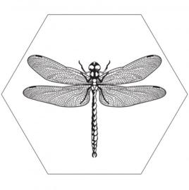 Muurhexagon libelle wit, Label-R