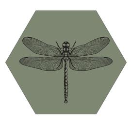 Muurhexagon libelle olijgroen, Label-R