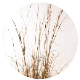 Muurcirkel grass 28 cm, Label-R