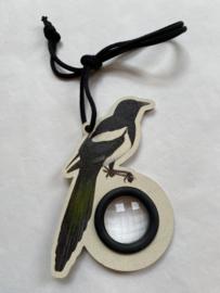 Drakenoog Vogel