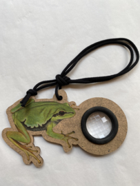Drakenoog Kikker