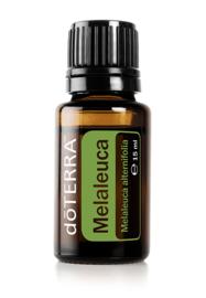 Melaleuca  (Tea Tree) - 15ml