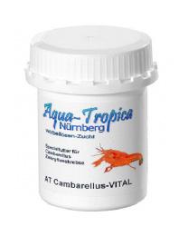 Aqua-Tropica Cambarellus-Vital