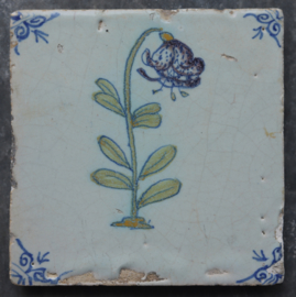 Tile with lily
