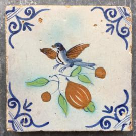 Vogel op fruit