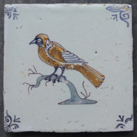 Vogel op boomstronk