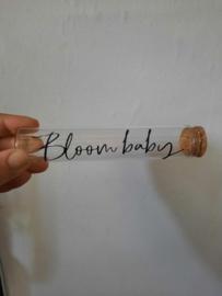 Buisje Bloom baby