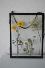 Lijst hangend met Zeeuwse gedroogde bloemen