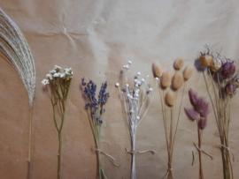 DIY Pakket paars