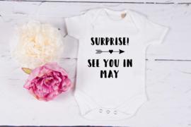 Zwangerschapsaankondiging rompertje