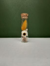 Glazen buisje 4 (10cm)