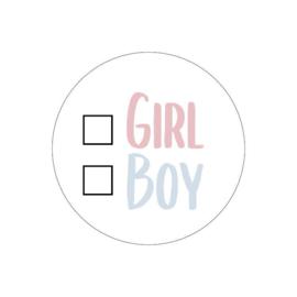 Stickers Girl or Boy   5 stuks