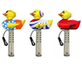 Thermometer eend