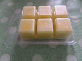 Coconut en Monoi Wax Melts