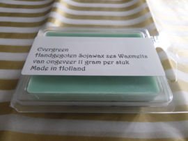 Evergreen Waxmelts