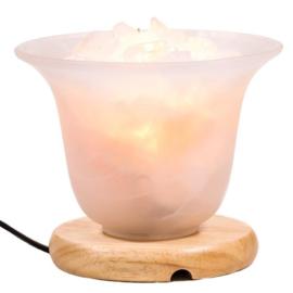 Bergkristal en zoutkristal Lamp