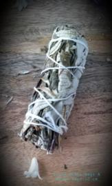 White Sage & Yerba Santa 10 cm