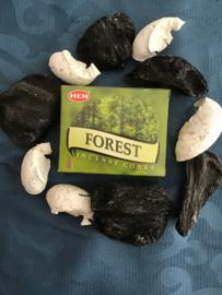 Hem wierook kegels  forest