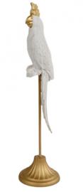 sculptuur papegaai 10,5x10,5x39 cm polystone wit