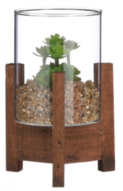 kunstvetplant Sedum 15 cm glas/hout groen