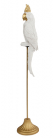 sculptuur papegaai 10,5x10,5x53 cm polystone wit