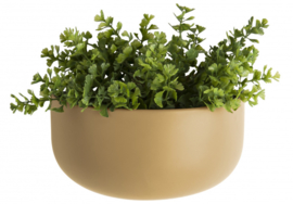 bloempot Oval Wide 20 x 10,8 x 9,5 cm keramiek bruin