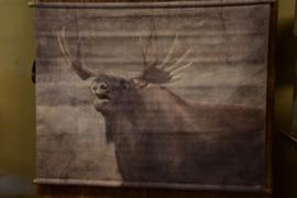 Wanddoek Deer
