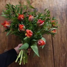 Bos tulpen M