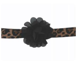 Haarband leopard zwarte bloem